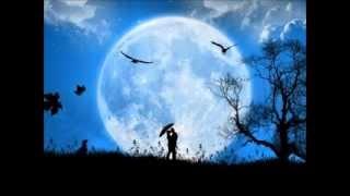 La Lune Brille Pour Toi Subtitulado  Español   Vanessa Paradis