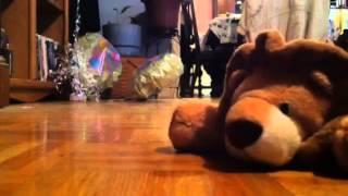 Lion the stuffed animal:The Robots