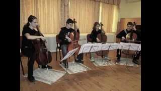 The Unforgiven - Cello Cover