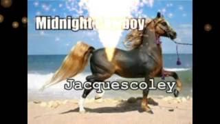 Midnight Cowboy-Rhinestone Cowboy