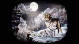 amor de lobos