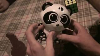 [vicc] Székely Dániel Panda oktató videója :D