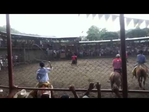 Toros Esquipulas Matagalpa