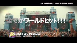 BEST EDM MEGAMIX【Trailer】