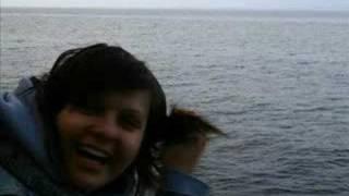 Beach.trip07 Bonobo - Silver Photoanimation