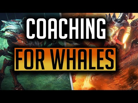 RAID | HEEELP HELLHADES!! FREE COACHING - 3 MONTHS IN!