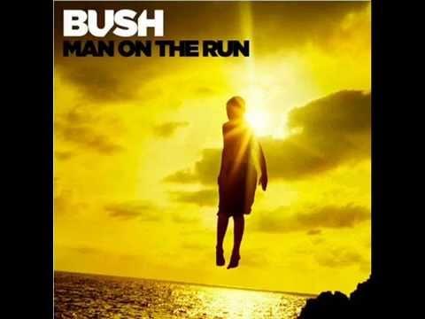 bush-surrender-felipe-ennes