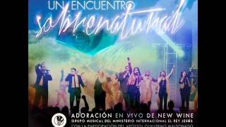 2-movimiento espiritual.New wine.Un encuentro sobrenatural (CD)