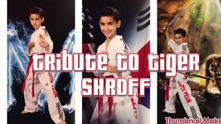 Tribute to Tiger Shroff by 8 Year Old Taekwondo Black Belt