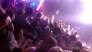 Marshmello live  TAMPA , FL Wrong !!!!