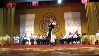 """Spectacolul muzical-coregrafic """"Pe Valea Mureşului"""" 2"""