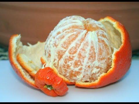 كيف تقلع عن التدخين بواسطه البرتقال?