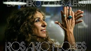 """ROSARIO FLORES """"LA CASA EN EL AIRE"""" REMIX DJ CHEKO CON SALERO"""