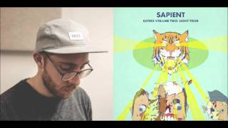 Sapient - King Louie Williams (Light Tiger)