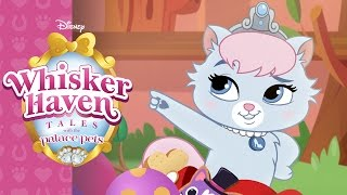 Slipper-Sparkle | Whisker Haven Tales with the Palace Pets | Disney Junior