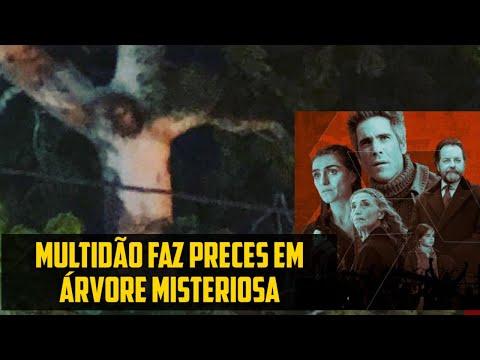Mistério na Colômbia: Suposta imagem de Jesus Crucificado aparece em árvore