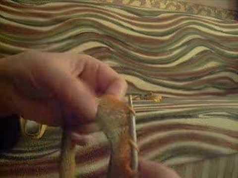 knitting,örgü,modelleri,örnekleri,şal,panço,bolero,çanta,ber