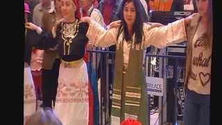muzica greceasca seri greceasti, nunti, botezuri Constanta - YANNIS AFI Palace Ploiesti