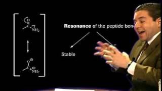 Organic Chemistry - Amide Bond width=