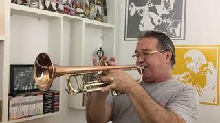 Do Seu Lado Jota Quest Instrumental Trompete