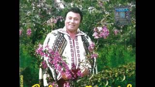 Vino mândră-n deal pe culme - Mihai Mihalache