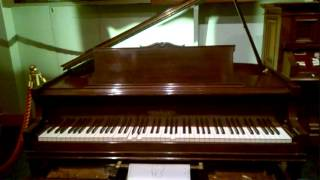 Rachmaninoff plays Flight Of The Bumble Bee