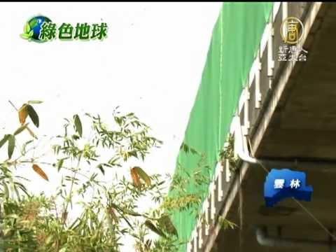 【紫斑蝶_台灣好樣!Formosa】雲林林內爆大量紫斑蝶 國道配合封路 - YouTube