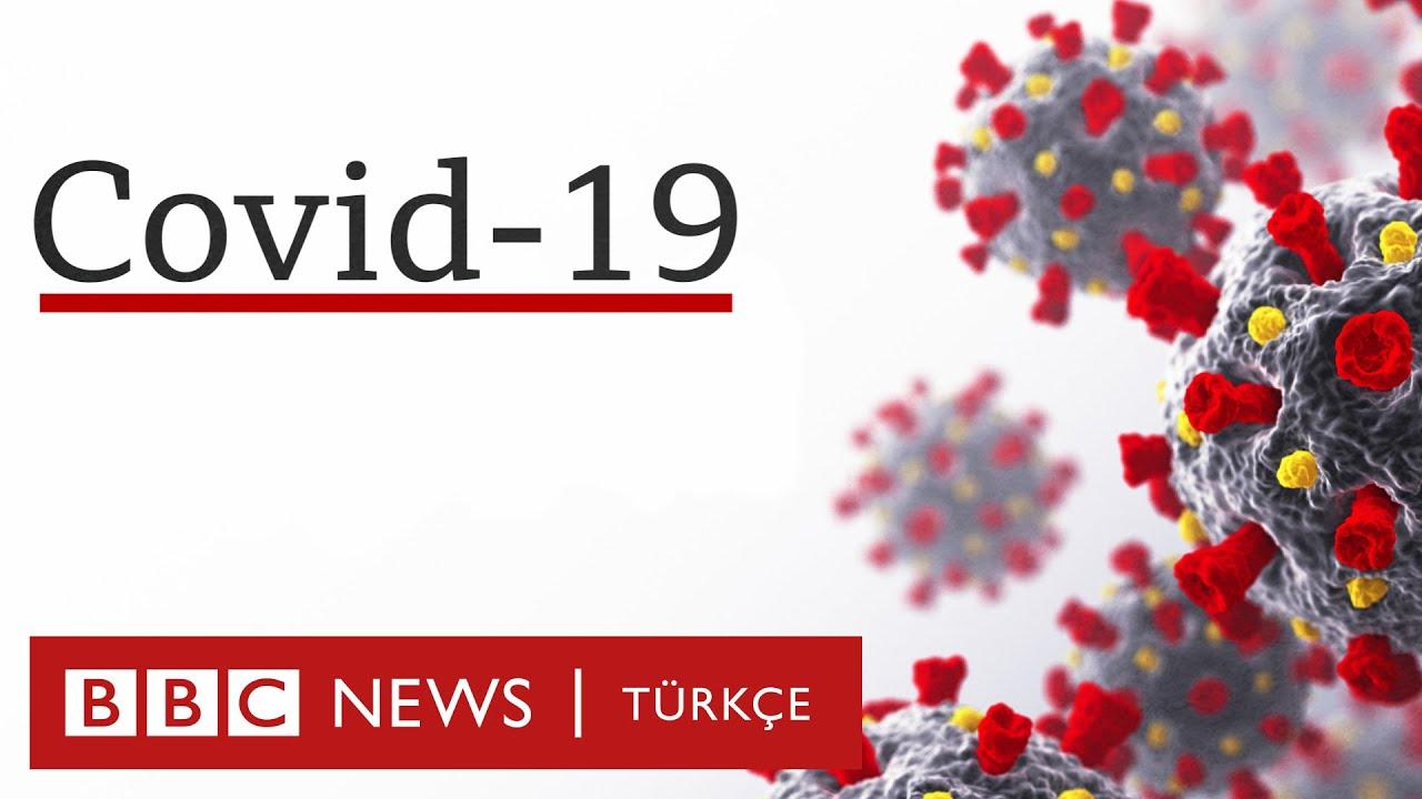 COVID-19 (Yeni Koronavirüs Hastalığı) Belirtileri Nelerdir?