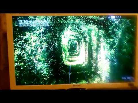 Японская передача об Украине (Ukraine on Japanese TV)Tonnel of Love part 2