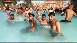Pinto or Ravi ki sadi ki video