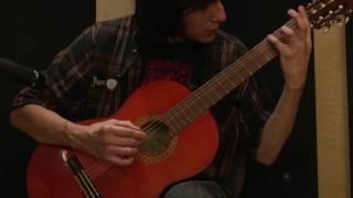 Lilium guitar cover