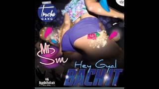 MrSM -- heyGyal(back it) -- [TruchaGang] -- AVRIL 2015