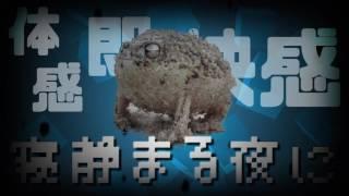【cover】 hibikase 【World's Cutest Desert Rain Frog】