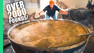 How India Cooks Lunch for 50,000 People for FREE! The MIRACLE in Punjab, India. width=