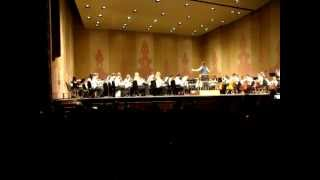 Knoxville Youth Orchestra Serenade - Franz Schubert/arr. Norman Ludwin