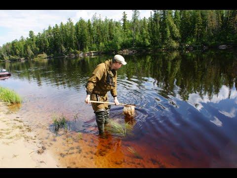 Экологические проблемы ЯНАО