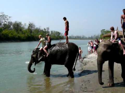 Nepal – Chitvan National Park