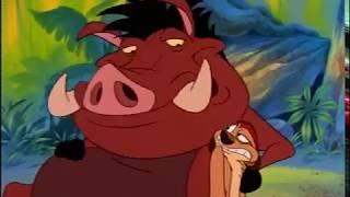 Timón y Pumba la serie animada  Español Latino