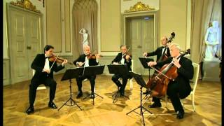 3.Mozart KV525 Eine kleine Nachtmusik III Menuetto Allegretto HD