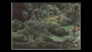 Riki Sorsa - Ue O Muite Arukō (Sukiyaki) HQ sound.