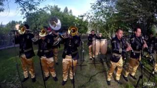 Banda La Pava - La Danza Del Coyote (En Vivo 2016) HD