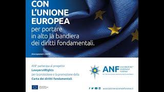 LA CARTA DEI DIRITTI FONDAMENTALI DELL'UNIONE EUROPEA, I PRIMI VENTI ANNI DALLA SUA APPLICAZIONE