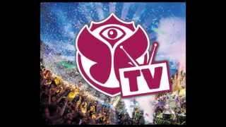 Tomorrowland 2013 #contagem regressiva!