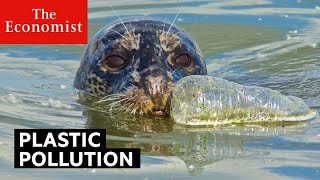 Plastic pollution: is it really that bad? | The Economist