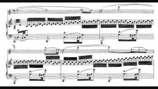 Schubert, Fantasy for Violin in C major, op. posth. 159, D. 934 (1828) - 1. Andante molto