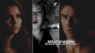 Multifandom | The heart wants what it wants