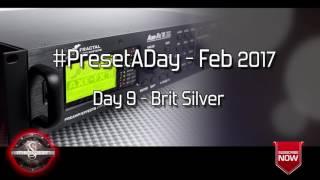 #PresetADay - Brit Silver Day 9 (Feb 2017)