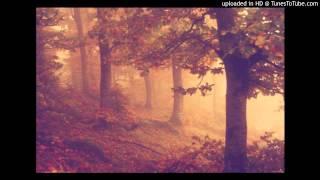 Nocturne(Insomnium Cover)