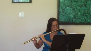 TMEA flute 2018-2019 Andersen etude in D# Minor (Etude #2)