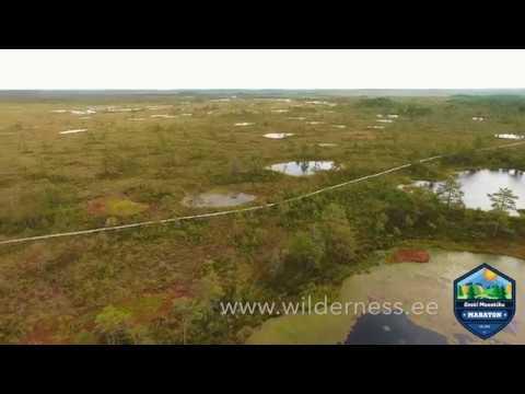 estonian wilderness marathon